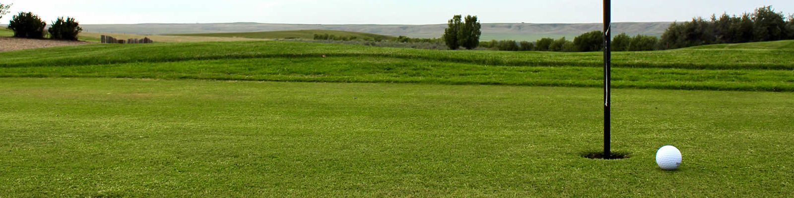 River Ridge Golf Club - On the Green